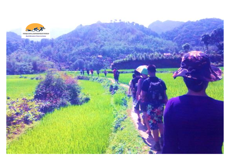 03 DAYS AMAZING TREKKING TRIP IN NGOC SON – NGO LUONG  NAT