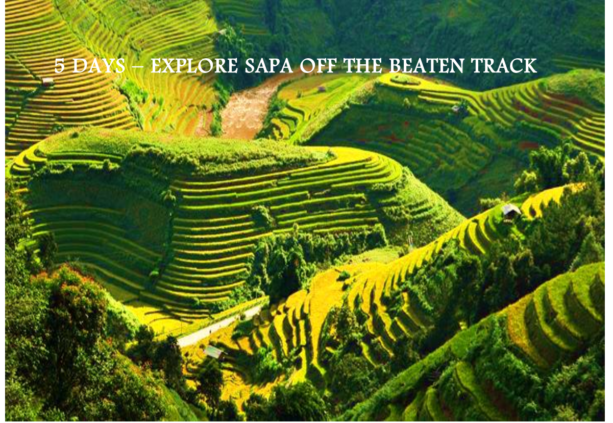 05 DAYS – EXPLORE SAPA OFF THE BEATEN TRACK