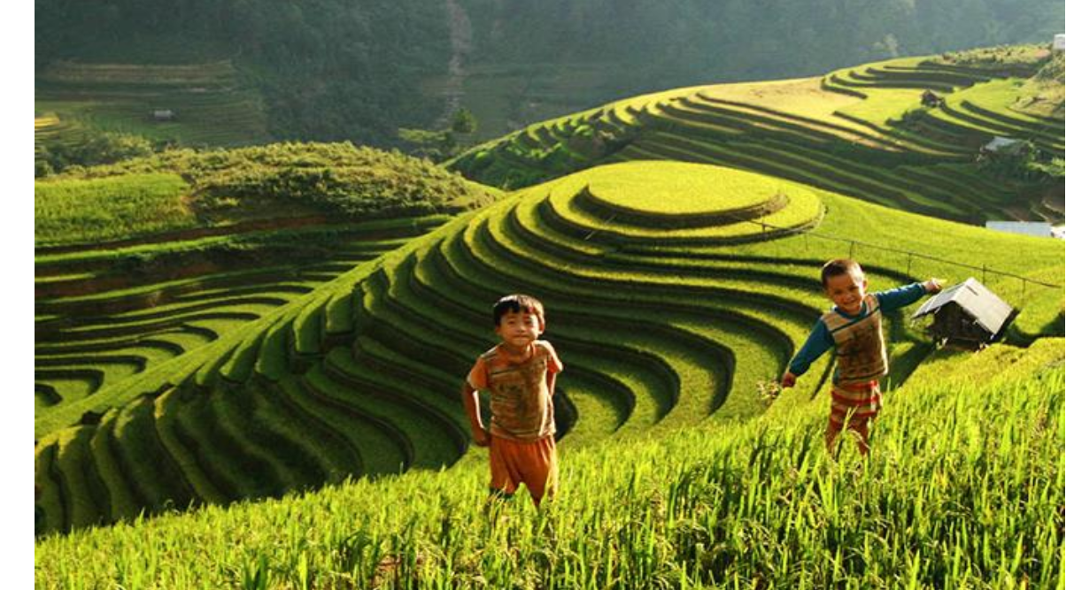 03 DAYS –  EXPOSURE BREATHTAKING  RICE TERRACES IN MU CANG CHAI