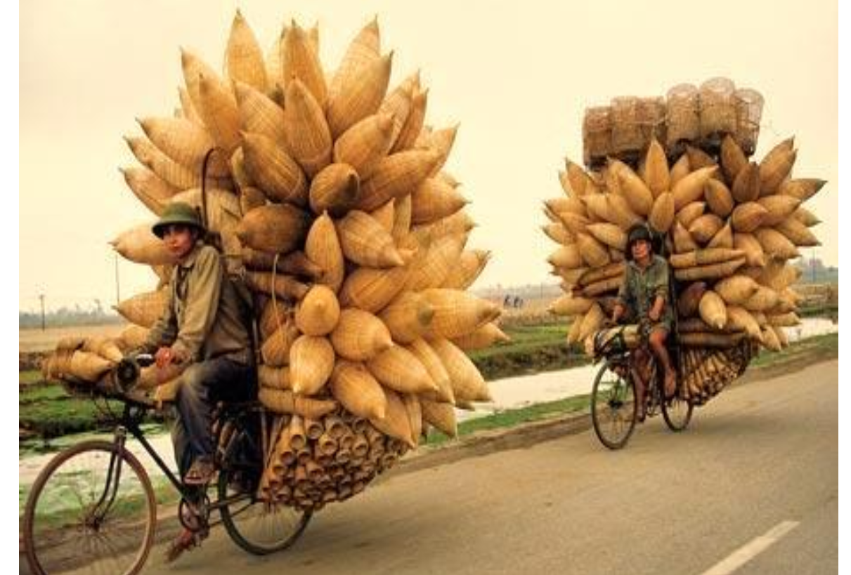 15 DAYS VIETNAM BEACH CYCLING TOURS
