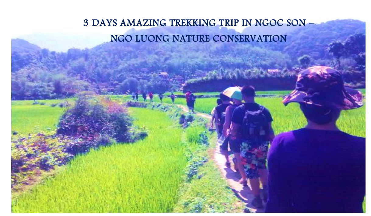 03 DAYS AMAZING TREKKING TRIP IN NGOC SON – NGO LUONG  NAT