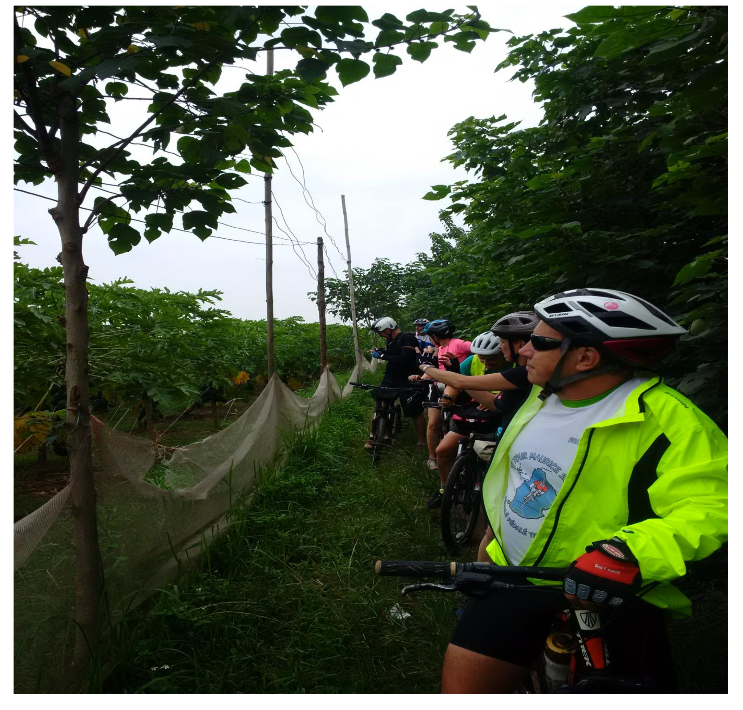 HANOI OFF THE BEATEN TRACK DUONG LAM FULL DAY CYCLING TRIP