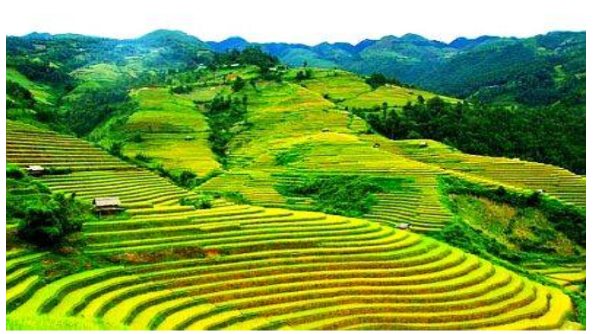 07 DAYS – EXPERIENCE HILL TRIBES IN SAPA   VALLEY