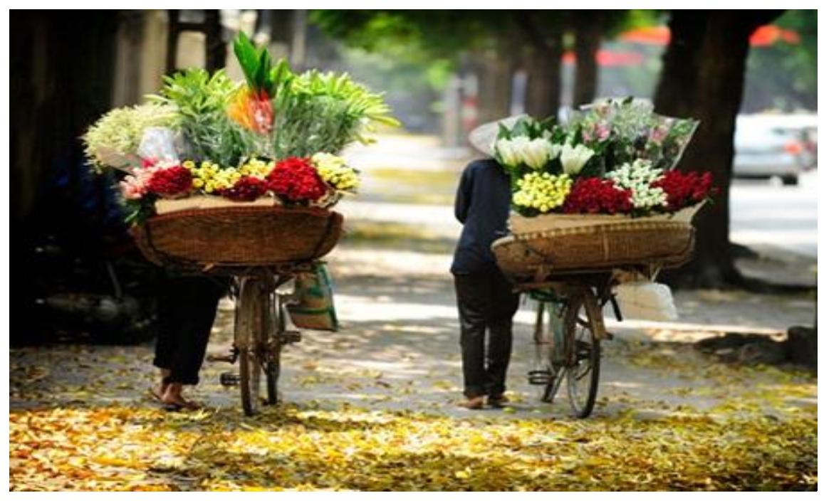 15 DAYS MIRACLE TRIP  VIETNAM & LAOS